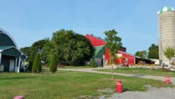 Forsythe-Family-Farms-small-picture