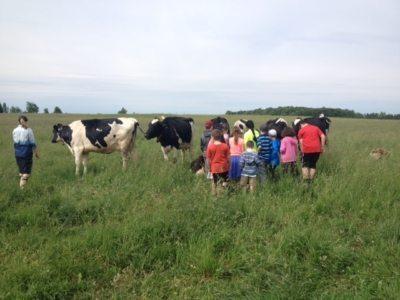 kids tour pasture.JPG
