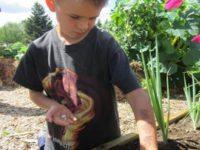 boy-gardening.jpg